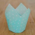 Tulpen Muffinförmchen Punkte Weiß/Hellblau