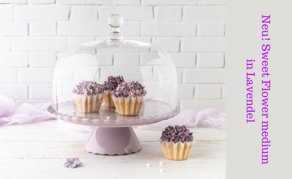 Sweet Flower medium in Lavendel mit Glashaube