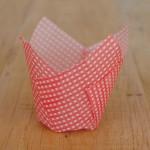 Tulpen Muffinförmchen Karos Weiß/Rot