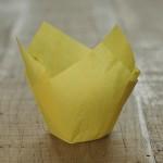 Tulpen Muffinförmchen Zitronengelb